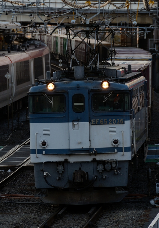 DSC_1347.JPG